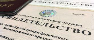 pensiya-po-potere-kormilca-dlya-ip